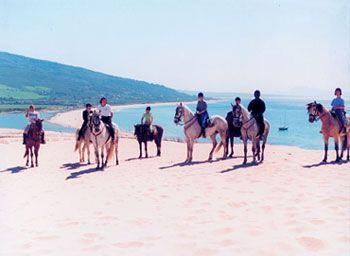 Horse riding on the dunes